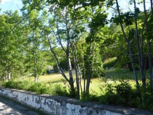 24501446 - Vacant lot for sale