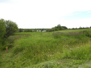 11937896 - Vacant lot for sale