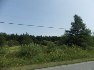 11942654 - Vacant lot for sale