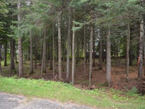 16595526 - Vacant lot for sale