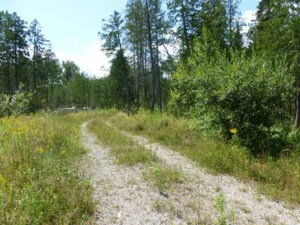 14090570 - Vacant lot for sale