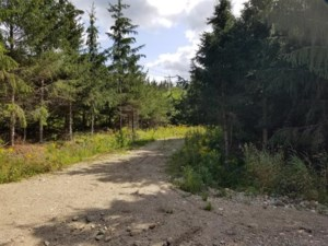 14626509 - Vacant lot for sale