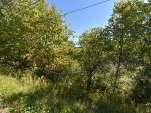15843669 - Vacant lot for sale