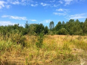 24847259 - Vacant lot for sale