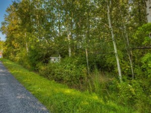 16104799 - Vacant lot for sale