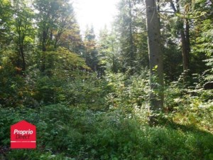 18759462 - Vacant lot for sale