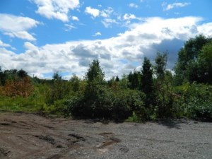 26556414 - Vacant lot for sale