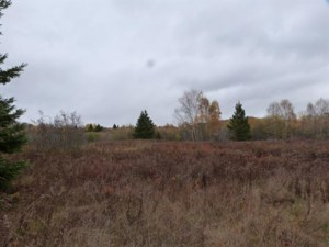 14778548 - Vacant lot for sale