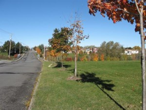 19411658 - Vacant lot for sale