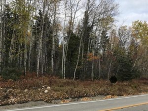 27567910 - Vacant lot for sale