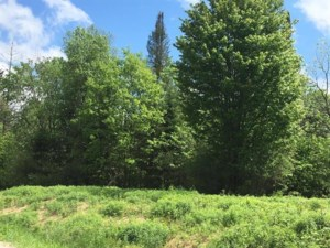 19272115 - Vacant lot for sale