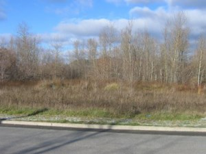 18382367 - Vacant lot for sale