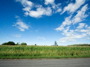 11037445 - Vacant lot for sale