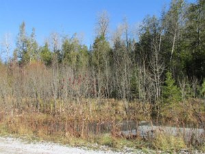 11472393 - Vacant lot for sale