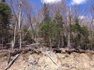 19750233 - Vacant lot for sale