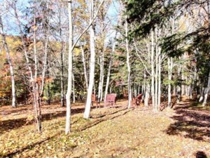15436412 - Vacant lot for sale