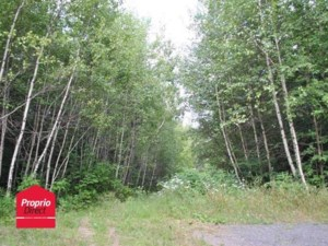 15681852 - Vacant lot for sale