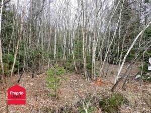 17024288 - Vacant lot for sale