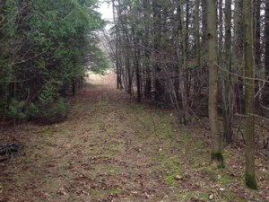 27497931 - Vacant lot for sale