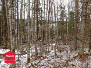 25449755 - Vacant lot for sale