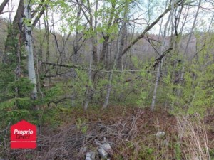 15655064 - Vacant lot for sale