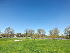 25005517 - Vacant lot for sale