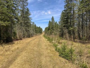 20194051 - Vacant lot for sale