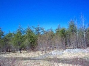21788298 - Vacant lot for sale