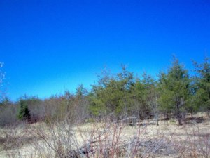 22968143 - Vacant lot for sale