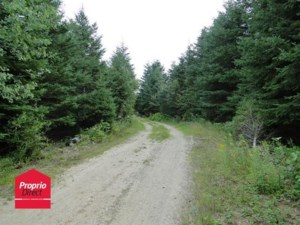 12149468 - Vacant lot for sale
