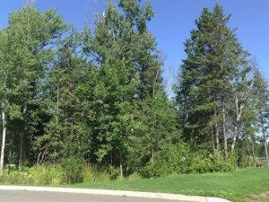21190848 - Vacant lot for sale
