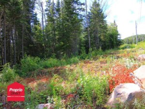 20499207 - Vacant lot for sale