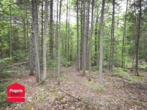 26343709 - Vacant lot for sale