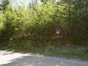14915974 - Vacant lot for sale