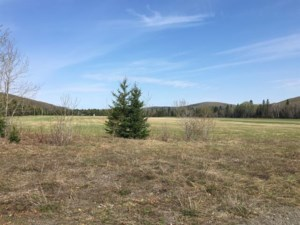 22849537 - Vacant lot for sale