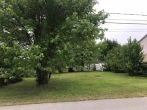 12615104 - Vacant lot for sale