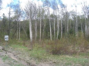 14856667 - Vacant lot for sale