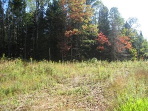 23209663 - Vacant lot for sale