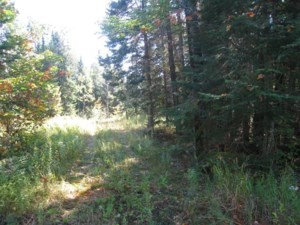 25096384 - Vacant lot for sale