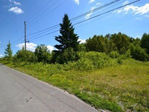 12211265 - Vacant lot for sale