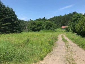 14045660 - Vacant lot for sale