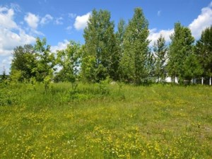 21327297 - Vacant lot for sale
