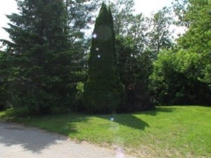 21620625 - Vacant lot for sale