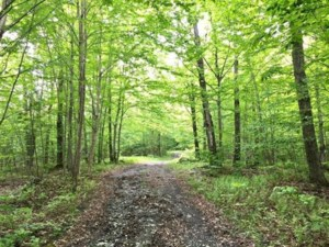 18767956 - Vacant lot for sale