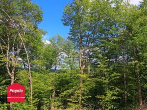 19391942 - Vacant lot for sale