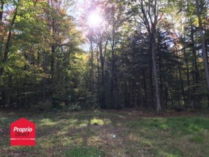 13955684 - Vacant lot for sale