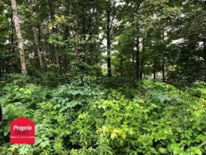 12549354 - Vacant lot for sale