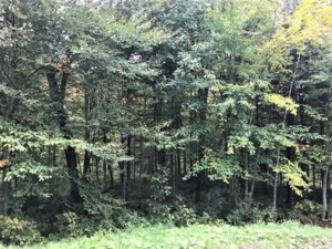 22386402 - Vacant lot for sale