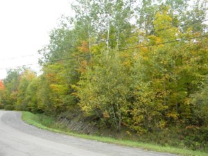 24446311 - Vacant lot for sale
