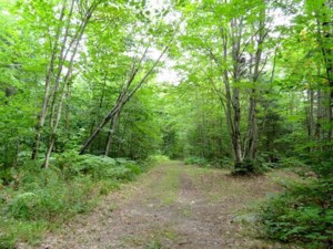 17238170 - Vacant lot for sale